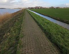 Marken 08-01-16 (de kist) Tags: thenetherlands aerial kap marken waterland markermeer gouwzee markendijk markenhavenbuurt markenkerkbuurt