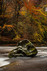 The Braan (old not bold) Tags: autumn river landscape scotland perthshire leadinglines braan