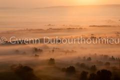 Marais Vernier-1 (Gwenn Dubourthoumieu) Tags: france nature normandie geo marais ecologie environement maraisvernier