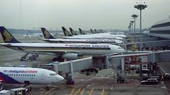 SQ Fleets at SIN Changi Airport - Singapore Airlines (Matt@PEK) Tags: sq businessclass singaporeairlines staralliance