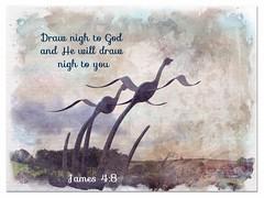 James 4:8 (Hilary bornagain1198) Tags: james derbyshire millennium swans bible scripture belper