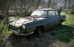 the Forgotten (Dave* Seven One) Tags: rot classic abandoned broken rotting vintage junk rust decay rusty renault used forgotten rusting junkyard import decaying caravelle renaultcaravelle