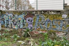 Troot - Ros (Sbastien Casters) Tags: street streetart paris france graffiti urbanexploration ros urbain graffitis troot