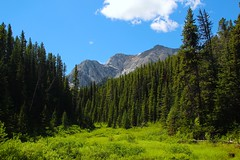 Peter Lougheed PP (Alberta Parks) Tags: summer nature clouds landscape outdoors enjoy protect