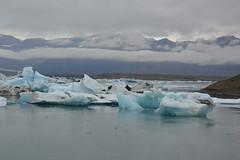 Jkulsrln Glacier Lagoon (JGHill) Tags: cold iceland glaciers icebergs jkulsrlnglacierlagoon
