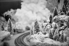kerstdingetje (sylvia@flikkert) Tags: zwartwit nederland zenite