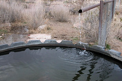 Water pumped from the snow-charged aquifer 4288x2848 (Charlotte Clarke Geier) Tags: wallpapers screensavers