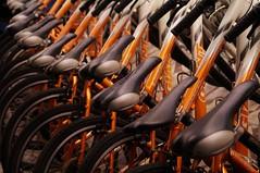 Hualien - vélos (luco*) Tags: taiwan bicycles hualien vélos bicyclettes taïwan flickraward flickraward5 flickrawardgallery