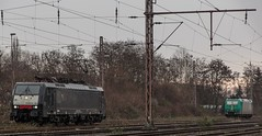 0138_2016_03_04_Wanne_Eickel_MRCE_dispolok_DISPO ES_64_F4_-_283_6189_283_CTD_185_533 (ruhrpott.sprinter) Tags: railroad train germany logo deutschland graffiti diesel 628 outdoor natur eisenbahn rail zug db cargo 64 nrw passenger es bismarck fret gelsenkirchen ruhr ruhrgebiet dortmund f4 freight locomotives metropole 928 dorsten 189 lokomotive sprinter ruhrpott gter niag dispo b mrce reisezug dispolok rb43 0277 ellok reckfeldstrasse