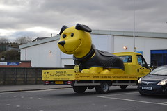 Dogs Trust (Will Swain) Tags: county uk travel march scotland britain country north transport central 4th scottish east vehicles vehicle seen falkirk stirlingshire 2016 hv65ouc