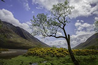 Glen Etive - Scotland