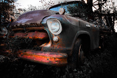 Old and Colorful (ali0140) Tags: old truck junk rustic
