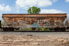 (o texano) Tags: bench graffiti texas houston trains d30 freights wyse a2m benching