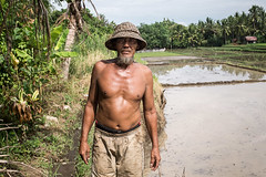 Bali, 2016 (Franco Milanese) Tags: portrait bali indonesia farmer ricefields ritratto ubud contadino