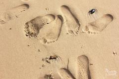 Pieds nus (Maddily M.G.) Tags: mer feet belgium nu pierre traces footprints noordzee northsea knokke pieds nordsee plage merdunord amoureux coquillage empreintes