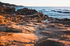 Point-Lobos-49 (hotcommodity) Tags: ocean california sunset hiking highway1 pacificocean beaches goldenlight bigsurcoast pointlobosstatenaturalreserve