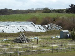 Collapsed (JuliaC2006) Tags: greenhouse guernsey 52in201623derelict