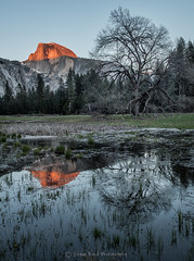 alpine H Dome _SMB3875 (steve bond Photog) Tags: trees sunset reflection nationalpark nikon yosemite halfdome redrocks yosemitenationalpark drama oneshot reallyrightstuff alpineglow stevebond realdeal