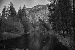 Merced River at Dusk (lennycarl08) Tags: california nature nationalpark fuji yosemite yosemitenationalpark mercedriver xt1