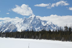 Mountains behind a frozen lake 1 (Aggiewelshes) Tags: travel winter snow mountains landscape scenery april snowshoeing wyoming jacksonhole colterbay frozenlake grandtetonnationalpark 2016 gtnp