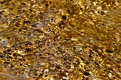 rippling water (Mr. Clive) Tags: water gold eau or clear ripples liquid liquide limpide onduler