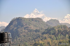 DSC_0341 (rachidH) Tags: nepal sky mountain snow nature clouds peak paragliding everest pokhara annapurna himalayas himal machapuchare rachidh