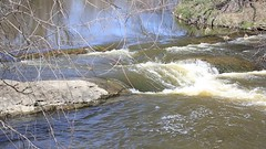 840A3034 (rpealit) Tags: nature river scenery wildlife rapids trail national waters winding refuge wallkill