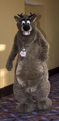 _DSC9176 (Acrufox) Tags: midwest furfest 2015 furry convention december hyatt regency ohare rosemont chicago illinois acrufox fursuit fursuiting mff2015