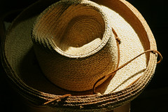 My Gardening Hat (sarahellenspringer) Tags: light hat gardening