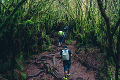 Narnia (amirulashraf.pj) Tags: nature forest outdoor hiking adventure jungle mossy