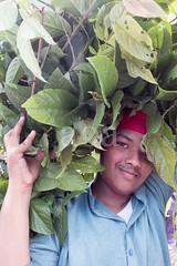H504_3278 (bandashing) Tags: boy portrait england tree green face festival manchester shrine foliage hidden covered sylhet bangladesh socialdocumentary mazar aoa shahjalal bandashing akhtarowaisahmed treecuttingfestival