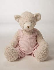 Beatrice Bear (initial_impressions) Tags: bear embroidered personalized