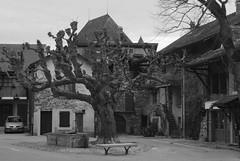 20160409Yvoire (32 sur 32) (calace74) Tags: france fortification hautesavoie rhonealpes laclman yvoire villemdival