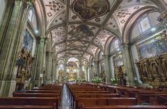 Parish of San Juan Bautista   -   Parroquia de San Juan Bautista (Coming back, slowly) Tags: canon mexico df dslr coyoacan 5dmk3