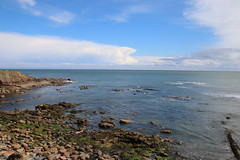 2016 - 26.4.16 Crail (20) (marie137) Tags: road new bridge sea sky beach dogs animals st landscape boats town sand crossing village harbour forth queensferry crail monans geman