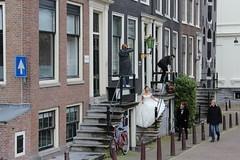 Amsterdam wedding (Davydutchy) Tags: holland netherlands amsterdam canal capital hauptstadt nederland paysbas niederlande gracht hoofdstad