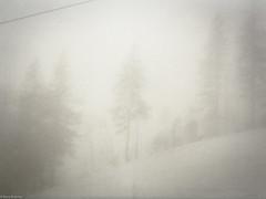 (Karo Krmer) Tags: schnee mountain snow tree berg fog analog 35mm bayern bavaria nebel baum arber gebirge bayerischerwald rollei35t ektar100