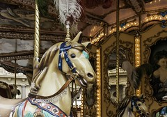 Raffinement (refinement) (Larch) Tags: horse lamp childhood cheval lampe florence decoration charm firenze merrygoround decor mange charme elegance enfance refinement raffinement pourlou