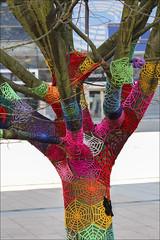 Yarn bombing (chando*) Tags: brussels tree colors colours couleurs bruxelles arbre europeandistrict quartiereuropen yarnbombing tricoturbain