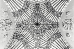 a million details (john dusseault) Tags: toronto tower architecture university flickr soldiers silverefex