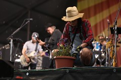 Jazz Fest - Neil Young, Gardners