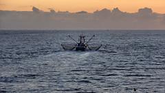 Krabbenkutter bei Morgendmmerung (LL) Tags: dawn boat shrimp nordsee morgendmmerung krabbenkutter