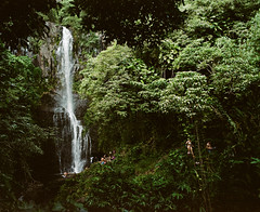 Don't Go, Jason Waterfalls (Casey Broadwater Photography) Tags: travel mountain film forest mediumformat hawaii waterfall maui foliage jungle swimsuit 45mm roadtohana pentax67 portra160