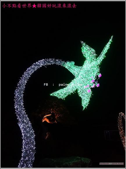晨靜樹木園 五色星光庭園展 (57).JPG