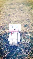 (my_little_planet) Tags: danboard