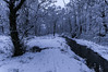 2016-01-16 039 (jamie reilly) Tags: trees snow water grass river scotland pier boat highlands scenery stream burn loch boathouse ard aberfoyle lochard