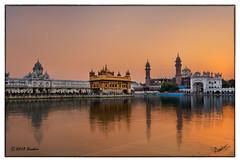 The Golden Temple (msankar4) Tags: india holy sikh gurdwara punjab amritsar trance goldentemple guru waheguru palki hymns holybook granth harmandirsahib sanctumsantorum granthsahib