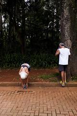 (Selva SP) Tags: parque sopaulo ibirapuera casal cor costas parqueibirapuera alongamento corredores gustavomorita selvasp