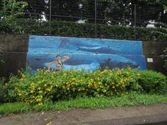 IMG_8760 (Momo1435) Tags: japan tokyo koto kotoku