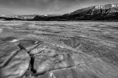 Abraham Lake mono (Len Langevin) Tags: winter blackandwhite mountain lake snow canada ice nature landscape rockies mono frozen nikon natural rocky abraham crack tokina alberta 1116 d300s